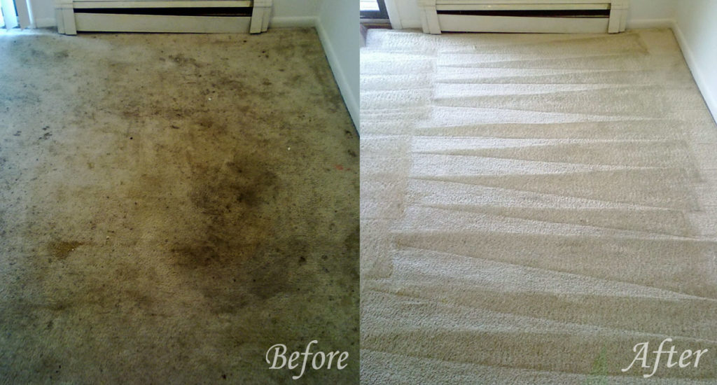 carpet cleaning menifee