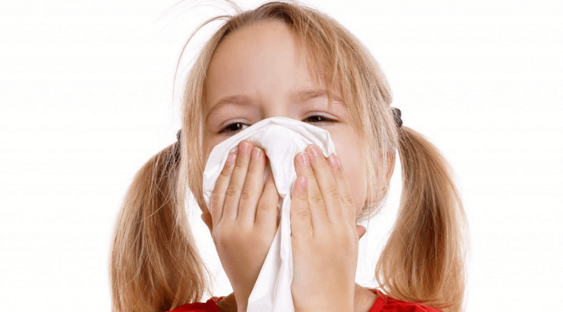 Best Carpet Cleaning Methods For Allergies