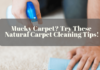 Mucky Carpet_ Try These Natural Carpet Cleaning Tips