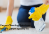DIY Carpet Cleaning Solutions