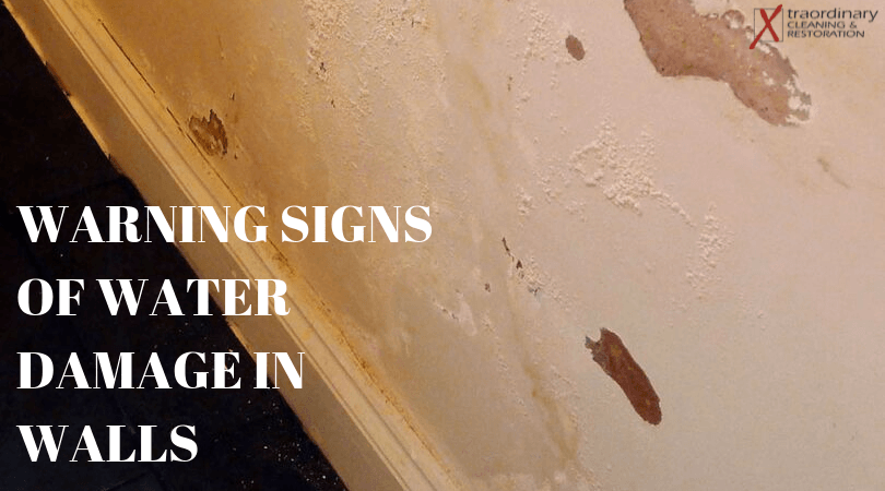 Warning Signs of Water Damage in Walls